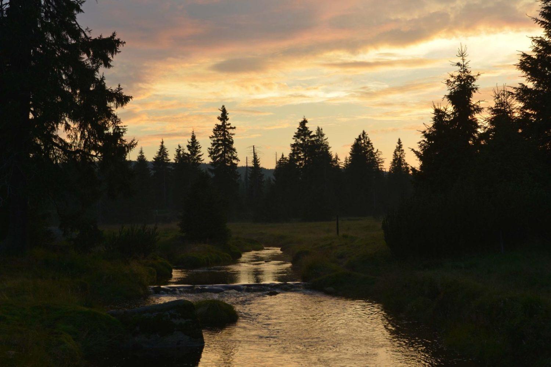 Rašeliniště u osady Jizerka v Jizerských horách - při západu slunce