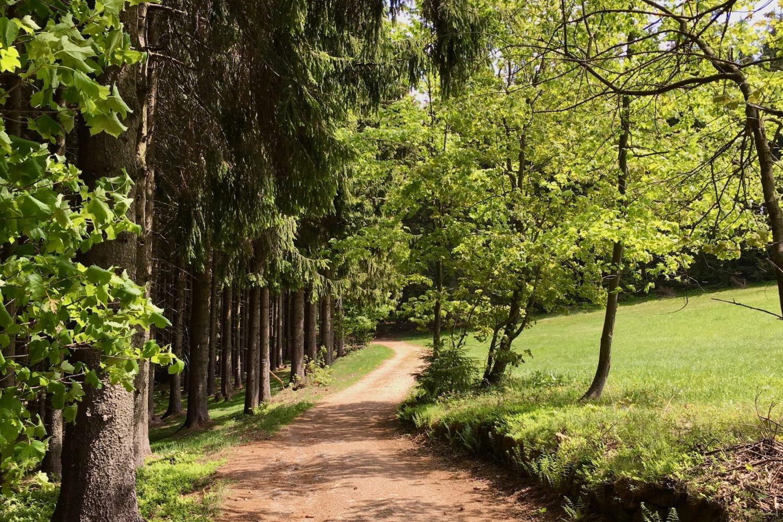 Stezka krajinou pojmenovaná po spisovateli Gustavu Leuteltovi - Horní Maxov, Jizerské hory