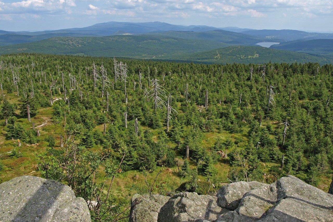Výhled z Jizery na zelené Jizerské hory