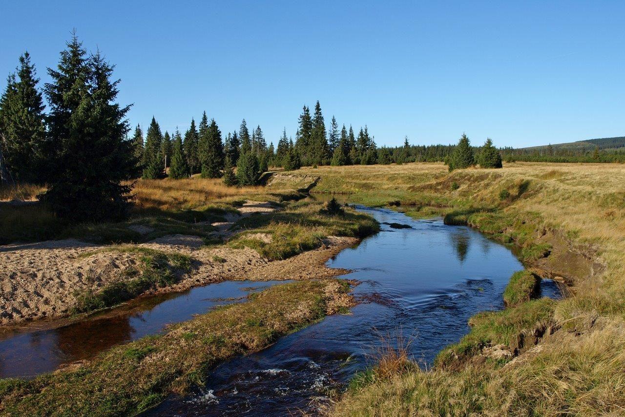 Krajina s rašeliništěm v Jizerských horách - osada Jizerka