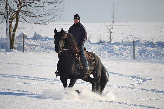 Kůň a jezdec v zasněžené krajině - Jizerské hory