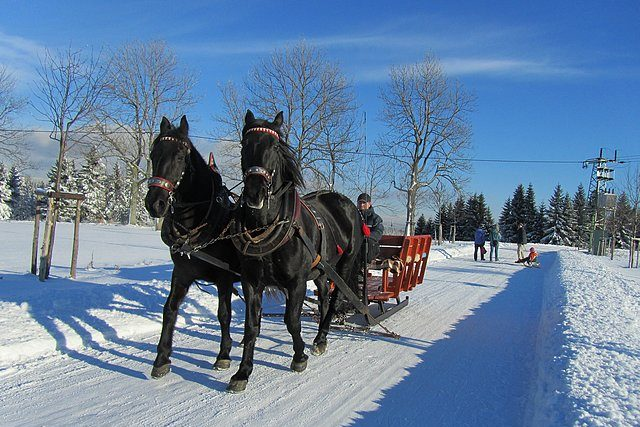 Zimní projížďka v kočáře s koňským spřežením – Jizerské hory
