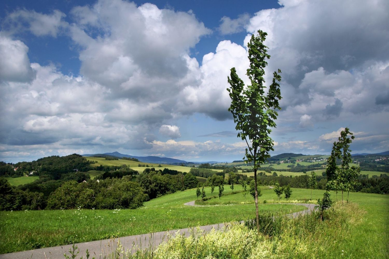 Pohled do zelené krajiny naučné stezky národopisců Jany a Josefa V. Scheybalových vedoucí z Jablonce do Českého ráje